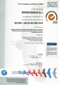 SGS ISO9001  Authentication